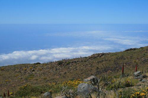 Kanarų salos,Teide nacionalinis parkas,Tenerifė,Ispanija,teide,gamta,kraštovaizdis,perspektyva,lavos laukas