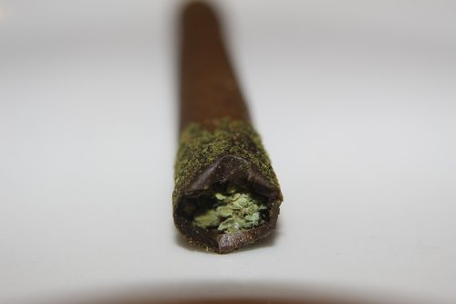 canna stick  infused pre-rolled joint  blunt