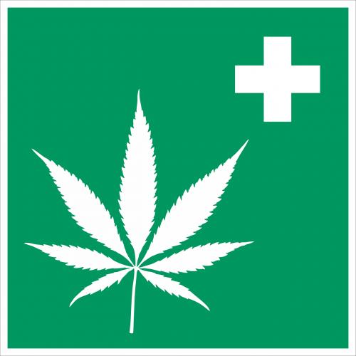 cannabis hemp intoxicant