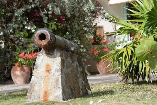 cannon  fort  big gun