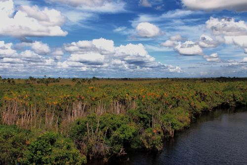 caño la pica venezuela rios venezuela
