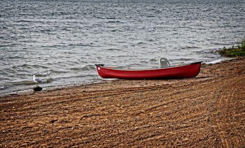 kanoją,papludimys,smėlis,vanduo,dangus,Sportas,vasara,veikla,turizmas,raudona,kelionė,gamta,riesas,baidarėmis,nuotykis,linksma,jūrinis,natūralus
