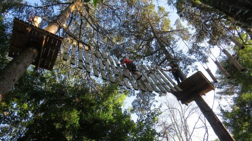 canopy tours adventure courage