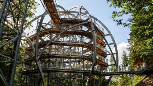 canopy walkway canopy walk treetop walk