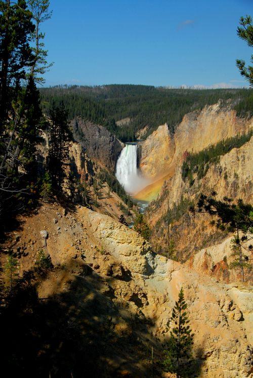 canyon waterfall yellowstone