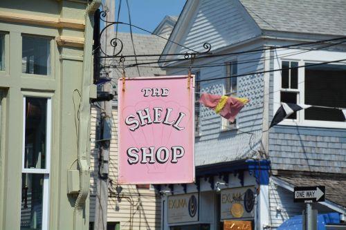 cap cod shell shop new england