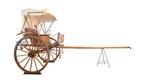 cape cart  horse buggy  carriage