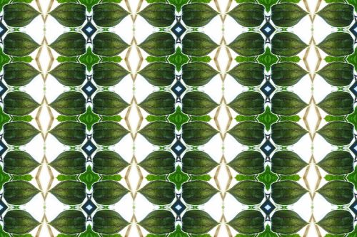 Cape Gooseberry Repeat Pattern