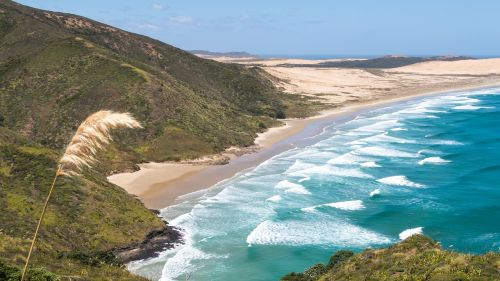 cape reinga new zealand nz