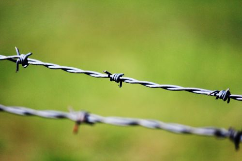 captivity prison barbed wire