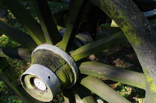 car wooden wheel hub