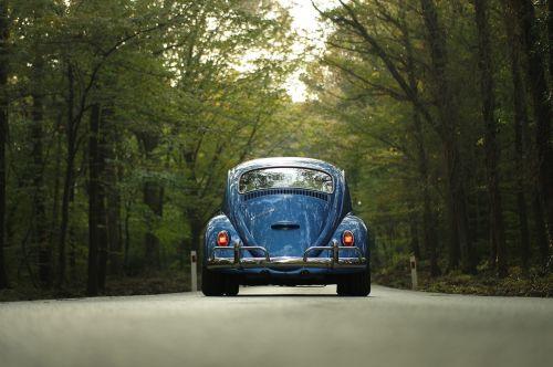 car classic car forest