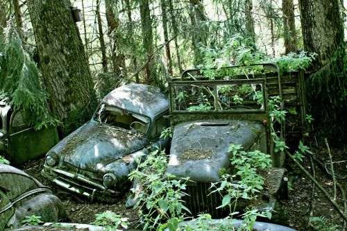 car cemetery discarded old