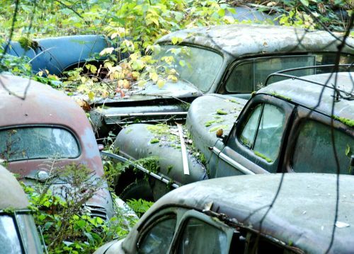car cemetery old cars neglected