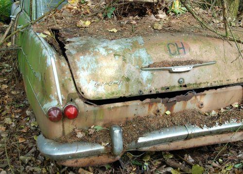 car cemetery auto old