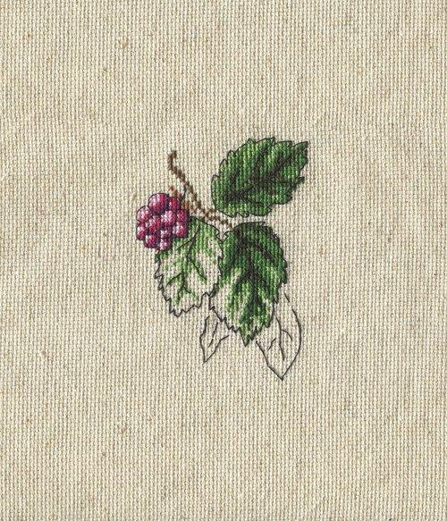 card  vintage  berry