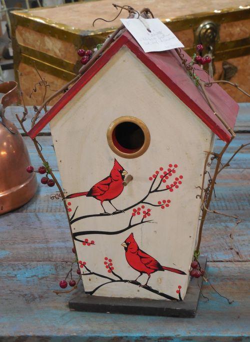 cardinal bird house bird