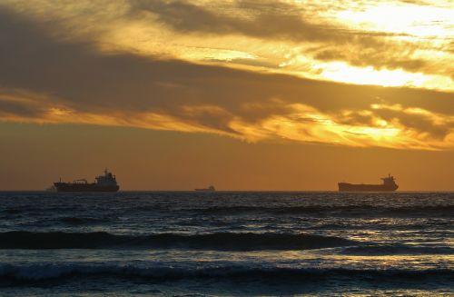 cargo ships freighter container ship