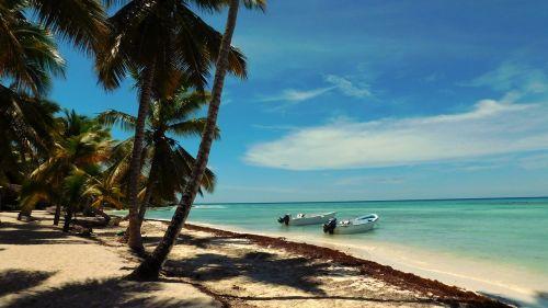 caribbean saona island sea