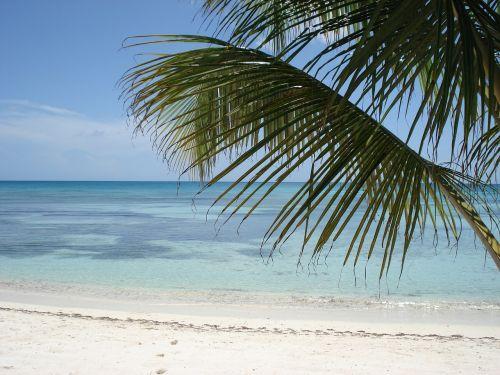 caribbean exotica recreation