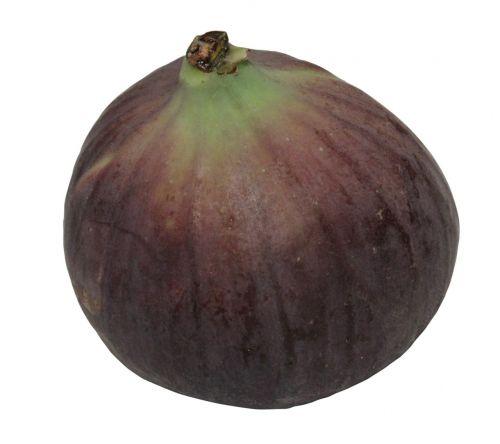 carica ficus figs