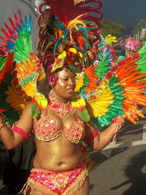 carnival disguise costume