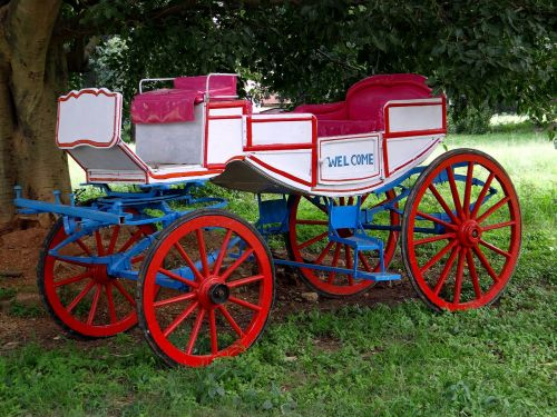 carriage horse horse drawn carriage