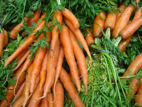 morkos,daržovių,ekologiškas