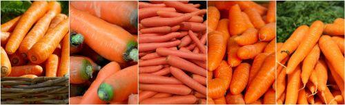 morkos,daržovės,koliažas,maistas,sveikas,šviežias,mityba,mityba,ekologiškas,valgymas,vegetariškas,vitaminai,šviežios daržovės