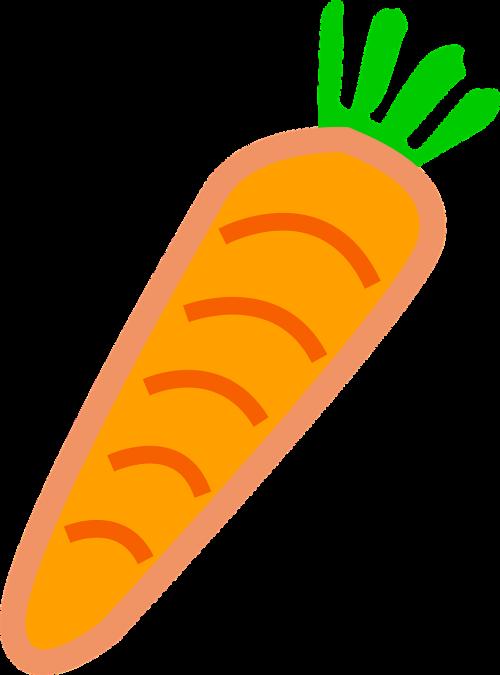 carrot vegetable orange
