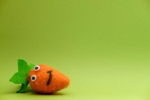 carrot  vegetables  felt
