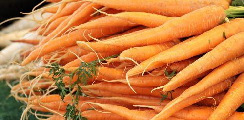 carrots farmers local market market
