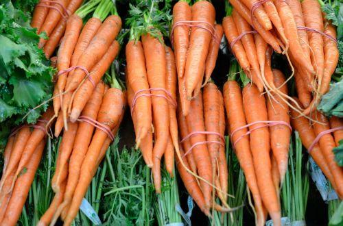 carrots orange veg