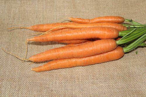 carrots federal carrots eat