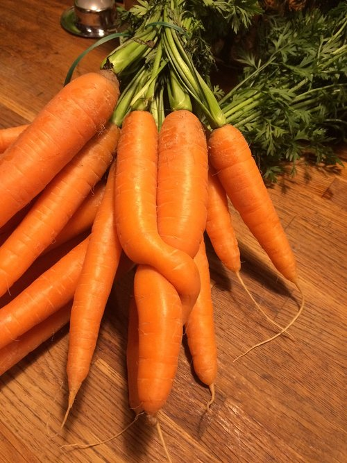 carrots  vegetables  vitamins
