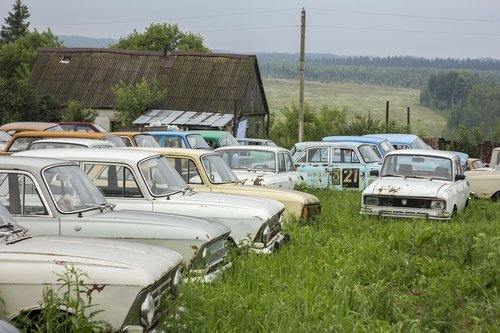 cars  museum  field
