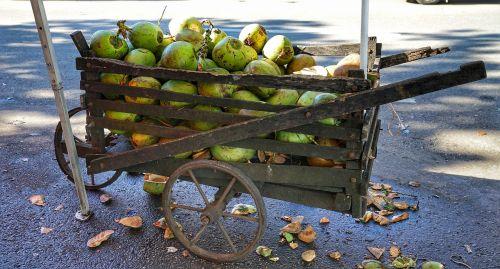 cart wooden coconuts