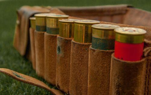 cartridges ammunition hunting