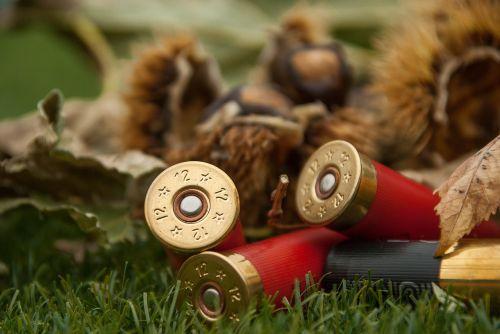 cartridges weapon rifle ammunition