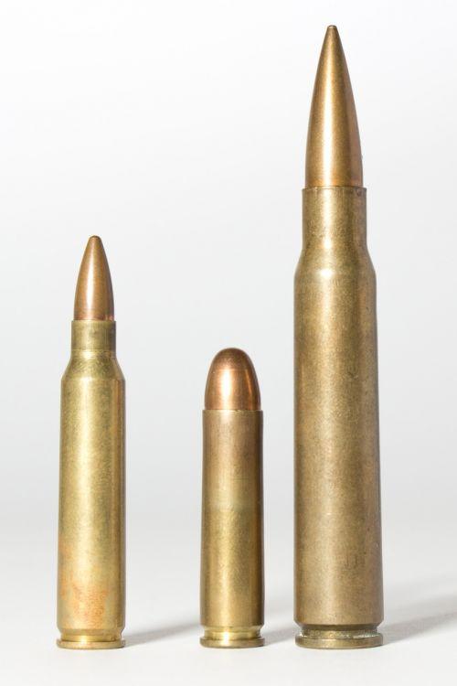 cartridges muniiton caliber