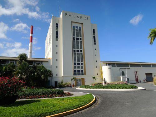 casa bacardi puerto rico rum