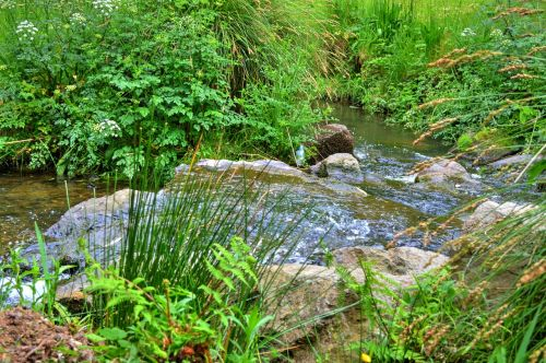 cascade water creek