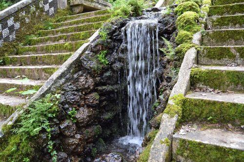 cascade forest buçaco