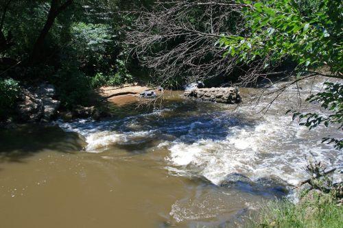 Cascading Water Stream