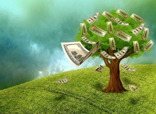 cash money wealth