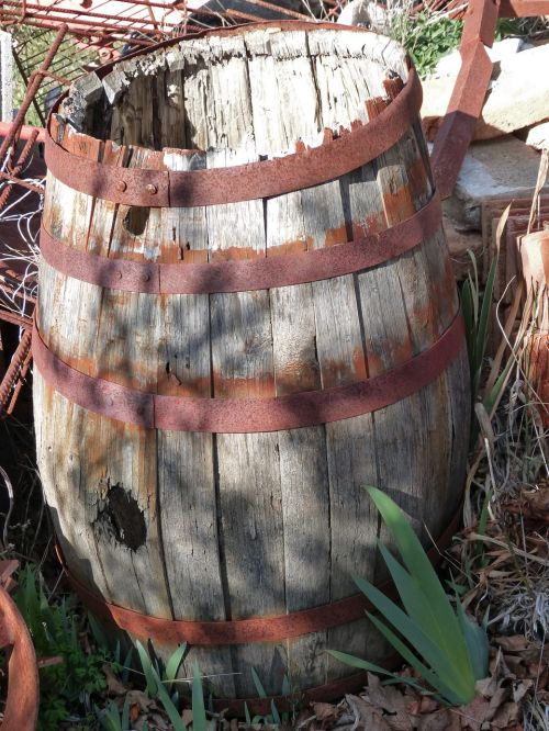 cask viticulture old