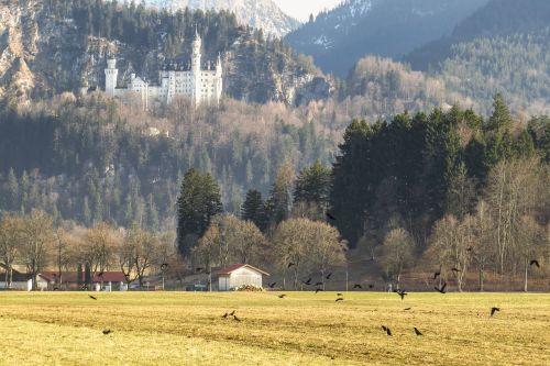 castle kristin schwangau