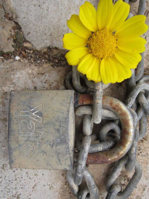 castle flower and closed key and lock