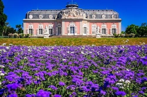 castle  park  flowers