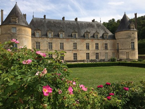 castle  park  swallows